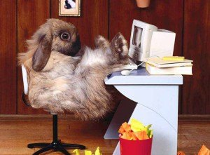 easter-bunny-at-pc